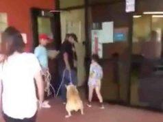 Maya, la cagnolina lasciata in un rifugio (foto Facebook)