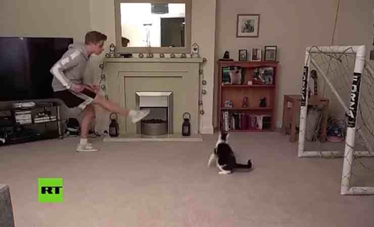 Miaonel Neuer, il gatto che para i rigori (screenshot YouTube)