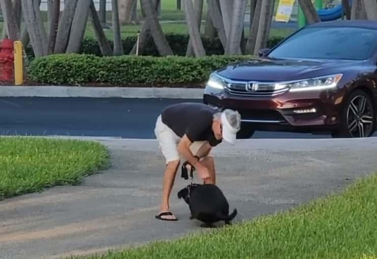 Uomo ripreso mentre picchia il suo cane