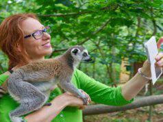 volontariato animali selvatici etico