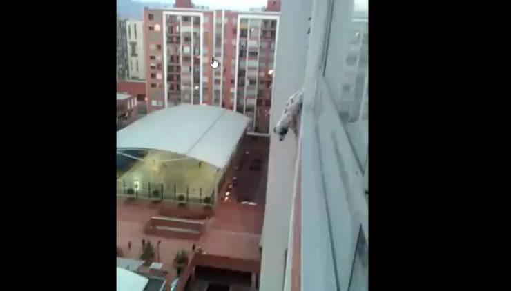 cane incastrato ringhiera balcone