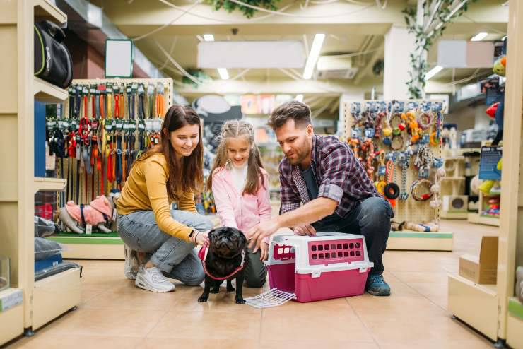 cane negozio animali