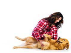 I cani soffrono il solletico? (Foto Adobe Stock)
