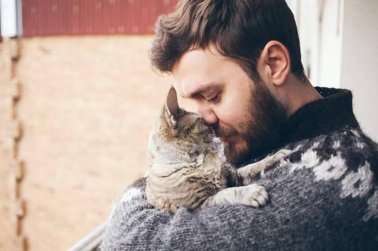 Come affrontare la morte del proprio gatto