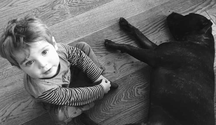 Il bimbo e il cane al suo fianco (Foto Pixabay)