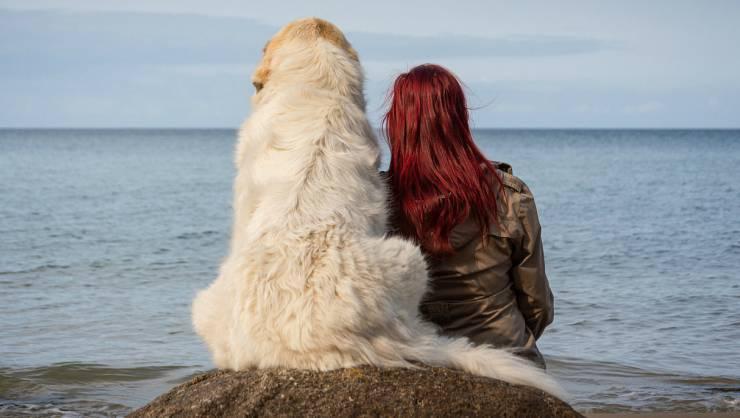 Padrona e cane (Foto Pixabay)