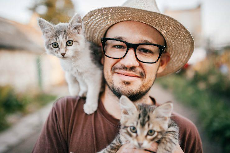 i benefici di avere due gatti