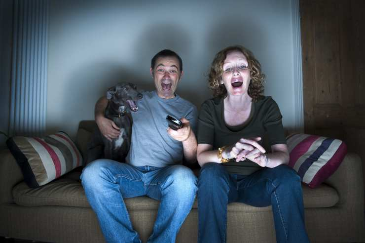 I cani si spaventano se guardano un film horror