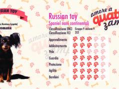 Russian Toy scheda razza