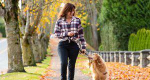 portare il cane a fare la passeggiata