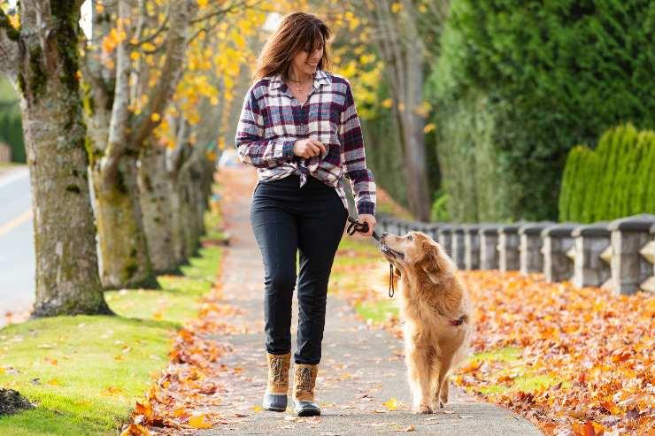 ortare il cane a fare la passeggiata