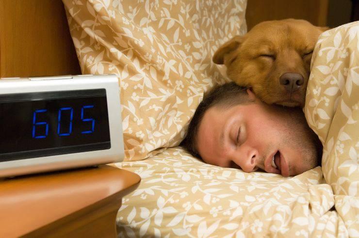 La prima notte del cane a casa, è di sicuro una notte da ricordare.