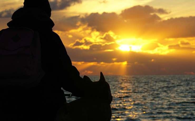 Cane e padrone al tramonto (Foto Pixabay)