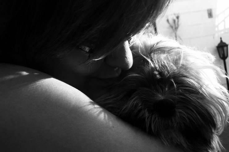 Il bacio al cane (Foto Pixabay)