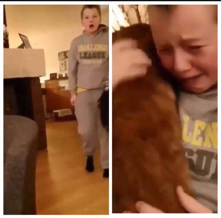 video bambino gatto sparito