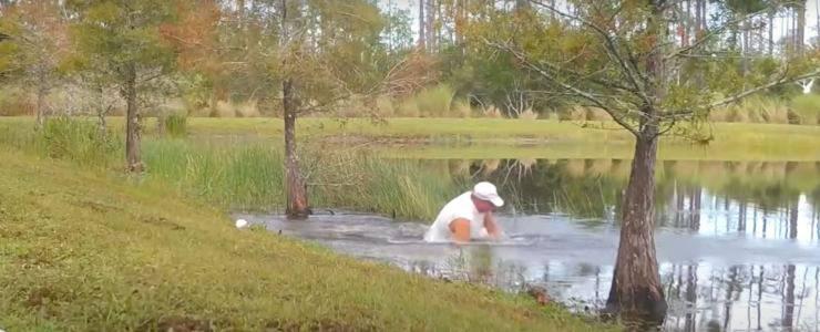uomo affronta alligatore salvare cucciolo
