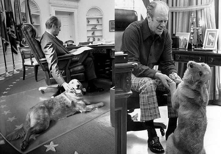 Pets dei Presidenti Ford