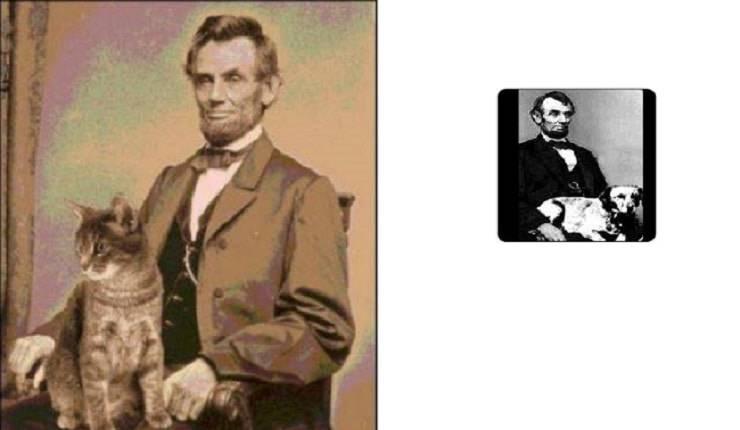 Abraham Lincoln cane gatto