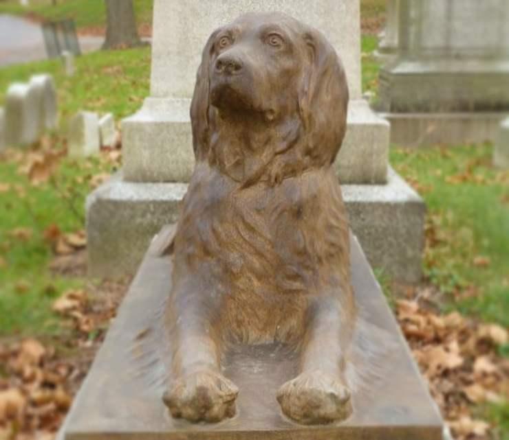 lapide cane 100 anni