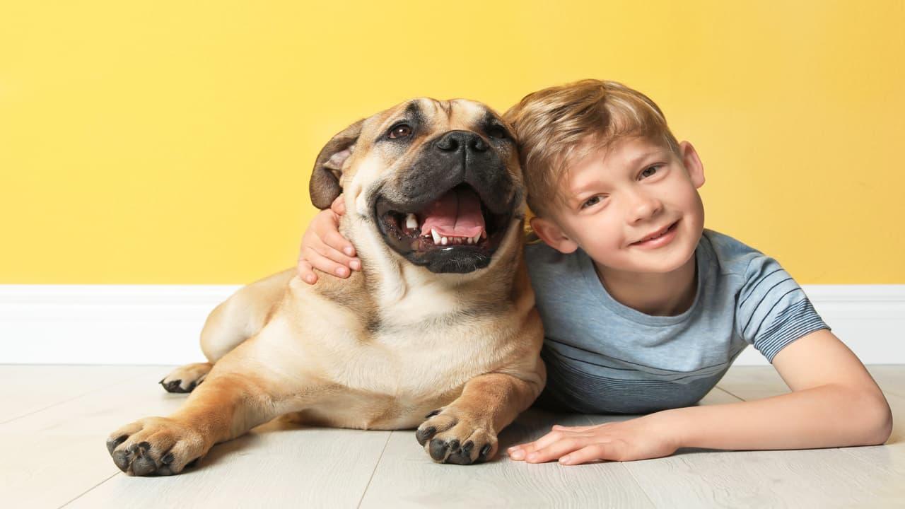 Cani e bambini: crescere insieme riduce il rischio di schizofrenia? (Foto Adobe Stock)