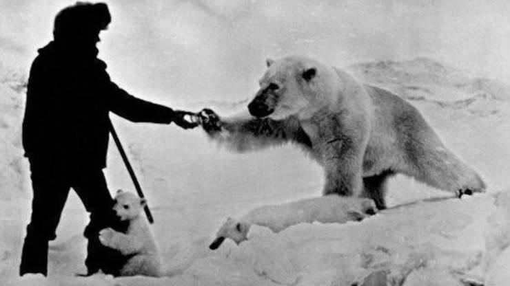 uomo amicizia orsi