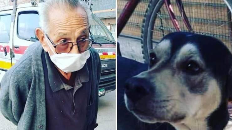 uomo anziano cane smarrito