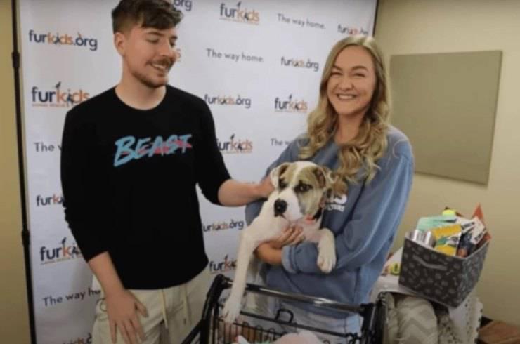 youtuber adottare 14 cani