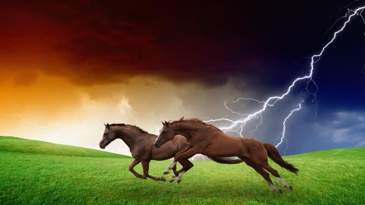 I cavalli sono meteoropatici?