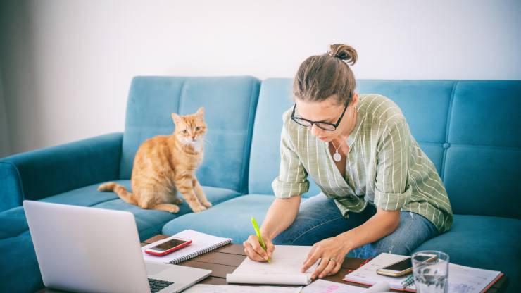 convivere con un gatto stimola mente e corpo