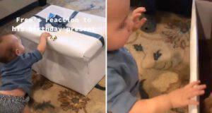 bambino regalo compleanno cucciolo cane