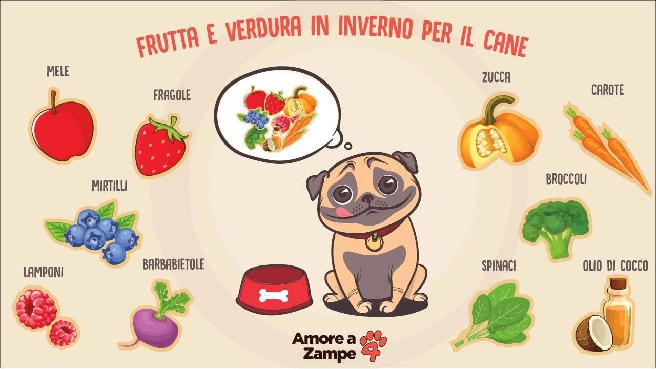 infografica frutta e verdura per cane in inverno