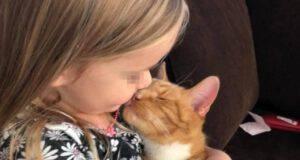 bambina canta gatto morire