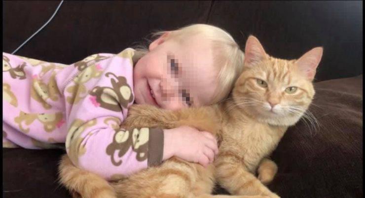 bambina gatto ultima canzone