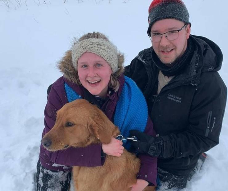 cane smarrito neve ritrovato tre giorni