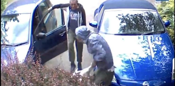 Picchiano il cane senza motivo (Screen video)