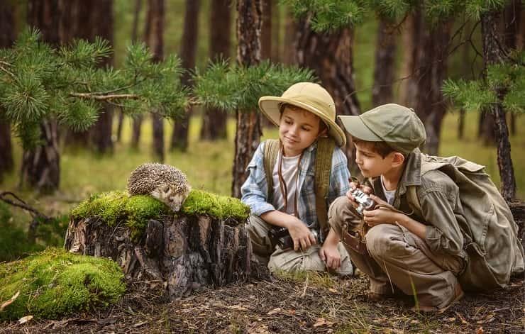 bambini incontrano riccio