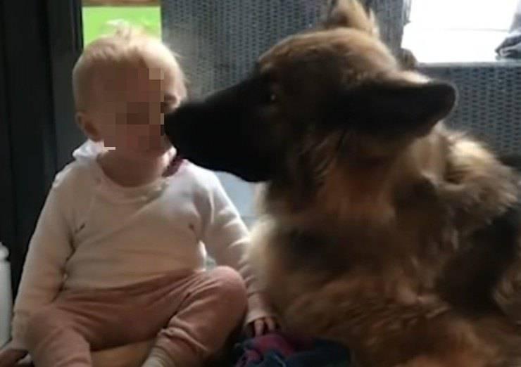 cane sorellina bambina