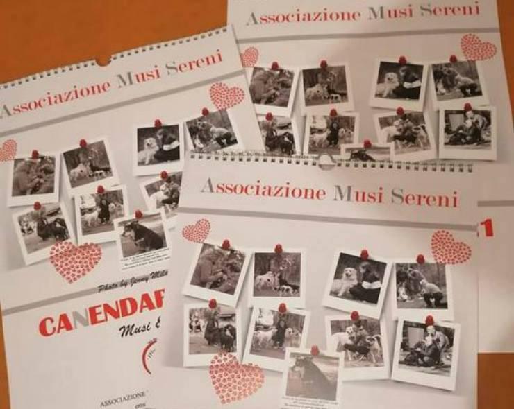 Il calendario Musi Sereni (Foto di Catia)