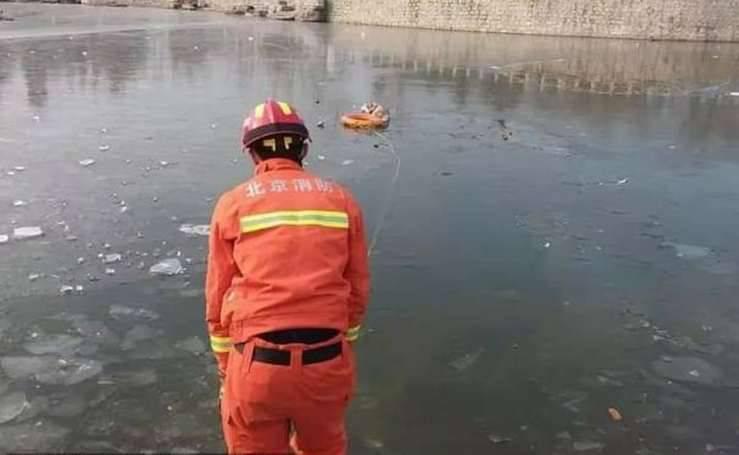 Cane salvato del lago ghiacciato