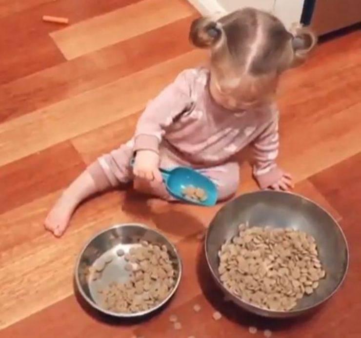 Bambina porta cibo cane video