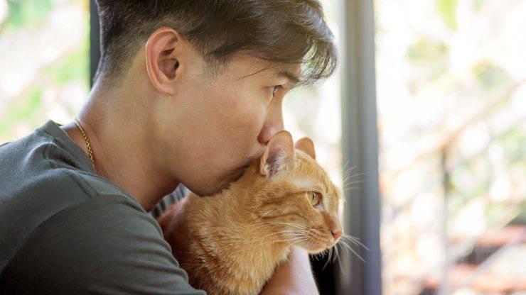 Il carattere del gatto dipende dal padrone