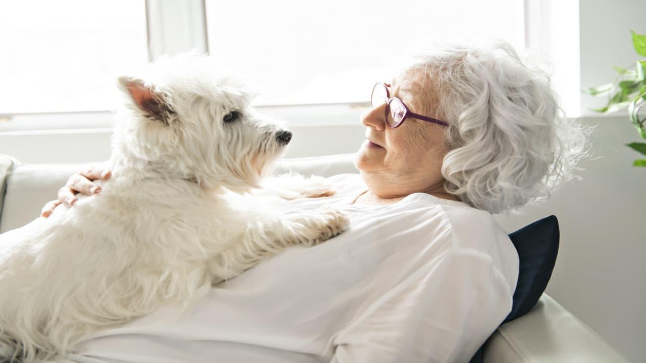 La compagnia di un cane aiuta i malati di Alzheimer