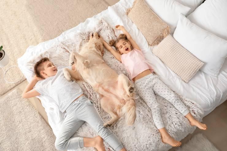 Dormire col cane: la posizione