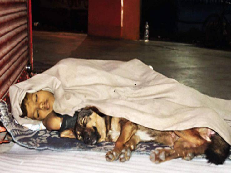 bambino senzatetto dorme cane india