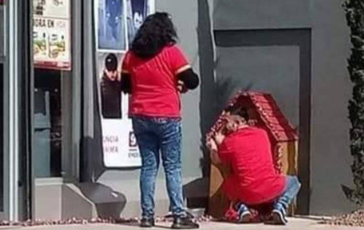 Migajon Cane Addetti Supermercato
