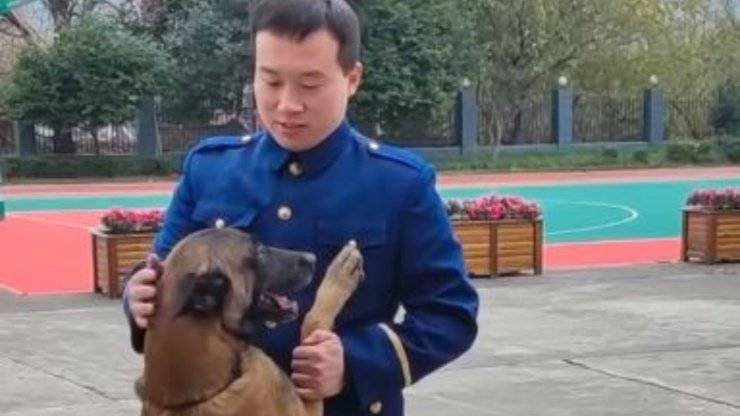 Cane Pompiere Abbraccio Cina
