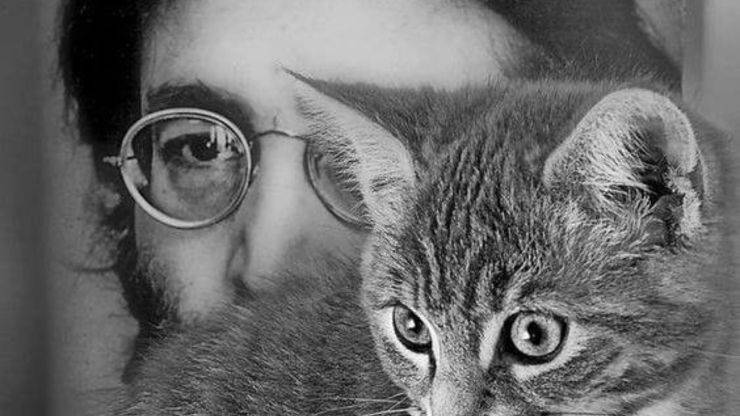 John Lennon Gatto