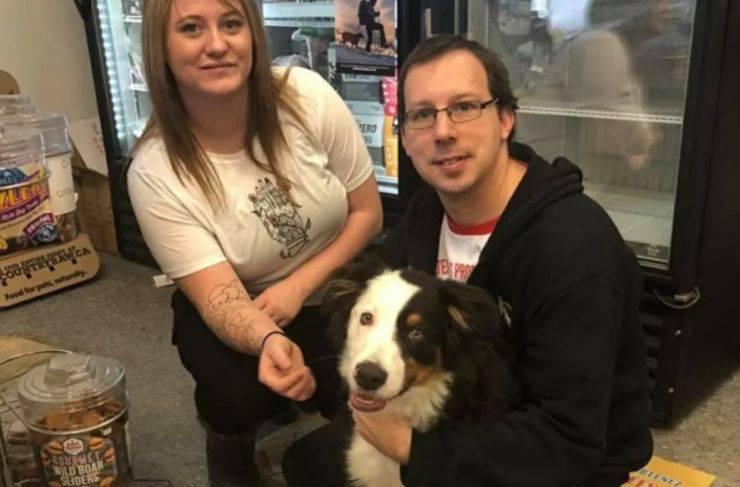 cane rapito chiede aiuto negozianti