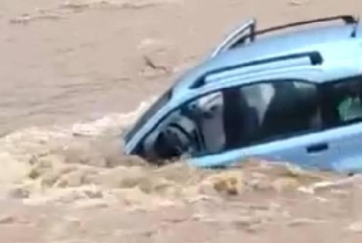 cani intrappolati auto alluvione