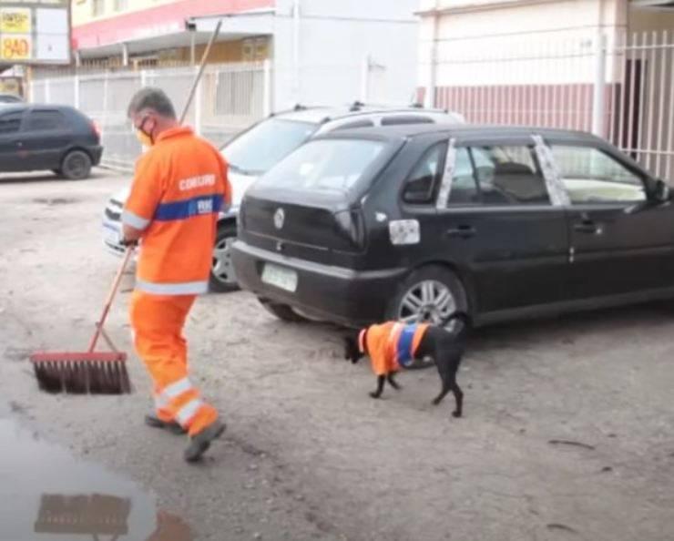 cane vestito spazzino